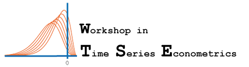 Workshop in Time Series